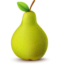 Juicy pear isolated on white vector