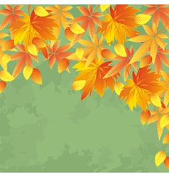 Vintage autumn background leaf fall vector