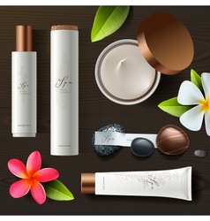 Natural spa cosmetics on wooden background vector