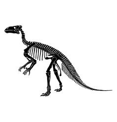 Dinosaur skeleton silhouette vector