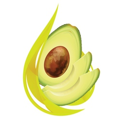 Avocado oil stylized drop vector