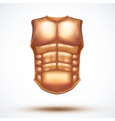 Golden ancient gladiator body armor vector