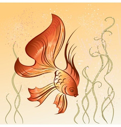 East goldfish vector