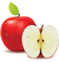 Red apple and half of apple vector