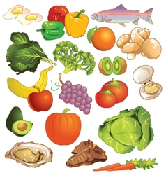 Variety of different kinds of nutritious foods vector