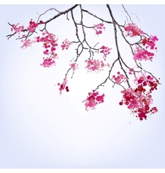 Spring blooming sakura branch of blots background vector
