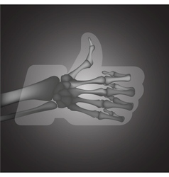 X-ray likethumbs up symbol vector