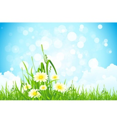 Flowers in the grass vector