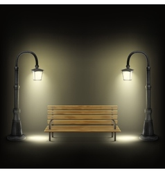 Bench illuminated by street lamps vector