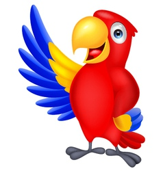 Macaw bird cartoon waving vector