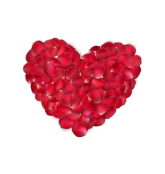 Heart of red rose petals isolated eps 10 vector