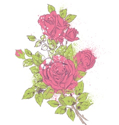 Rose bouquet vector