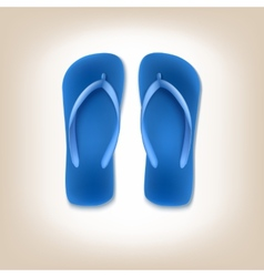 Beach slippers icon vector