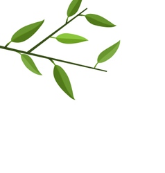 Branch tree with green leaf vector