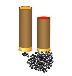 Hunting cartridges vector