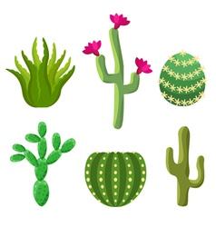 Cactus set vector