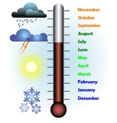Months of the year with a thermometer vector