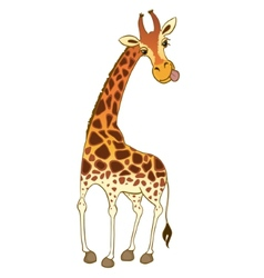 Cartoon giraffe vector