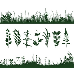 Silhouettes grass vector