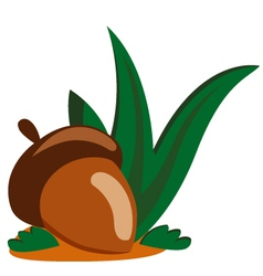 Acorn nut vector