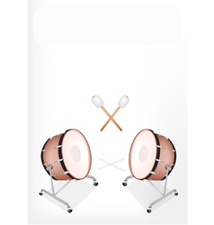 Two beautiful classical bass drum vector