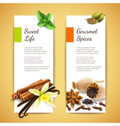 Spices banners vertical vector