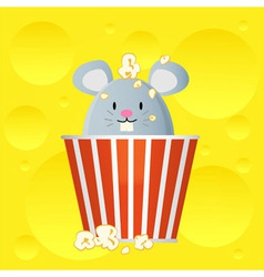 Popcorn cheese vector