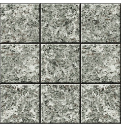 Stone tile texture vector