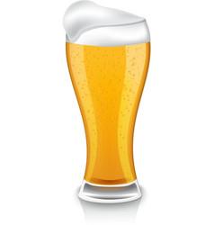 Glass of light beer vector