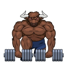 Muscular bull is lifting dumbbells vector