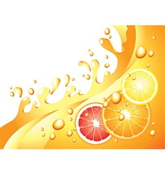 Citrus splash horizontal background vector