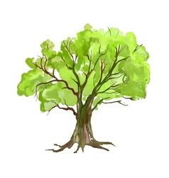 Tree hand drawn painted vector