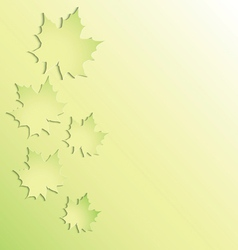 Green maple leaves on green background vector