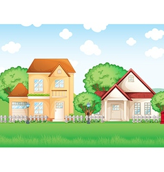 Two big houses vector