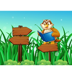 An owl reading a book above a wooden arrow board vector