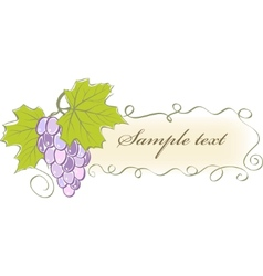 Vintage banner with grapes and leaves vector