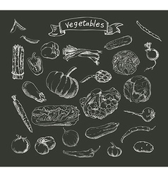 Vegetables sketch vector