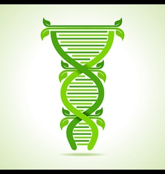Ecology concept- leafs make a dna strand vector