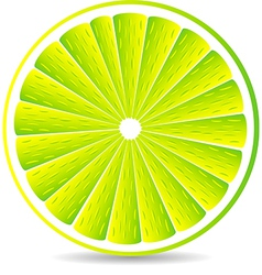 Juicy lime slice vector