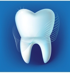 Tooth on a dark blue background vector