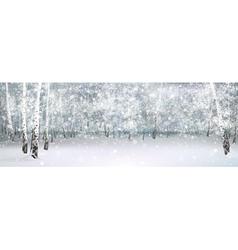 Nature birch background vector