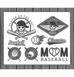 Baseball labels and badges vector