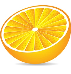 Half orange isolated on white vector