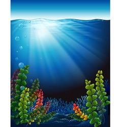 Plants under the sea vector
