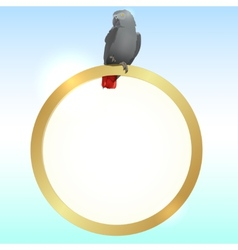Parrot and golden frame vector