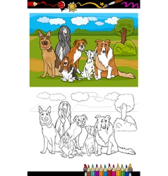 Dogs breeds cartoon for coloring book vector