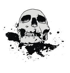 Skull mud splatter vector
