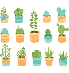 Succulents vector