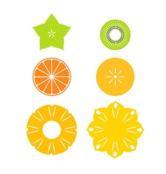 Cut fruit vector