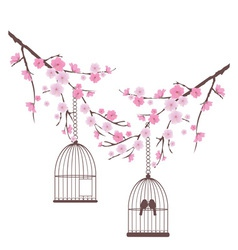 Bird love cage vector